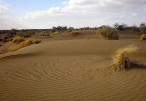 Природная зона пустыни и полупустыни